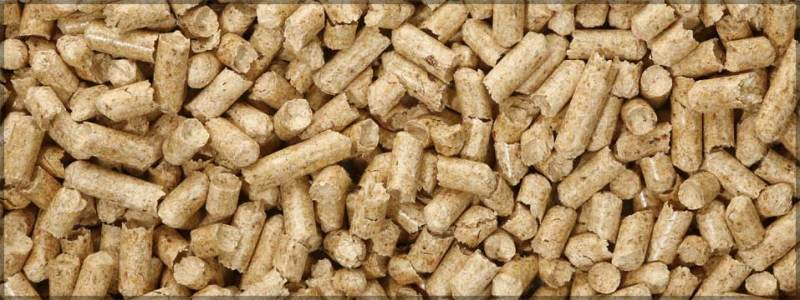 Wood Resources International: Over 22 Million Tons of Wood Pellets Were Shipped Globally in 2018, up 21% From 2017